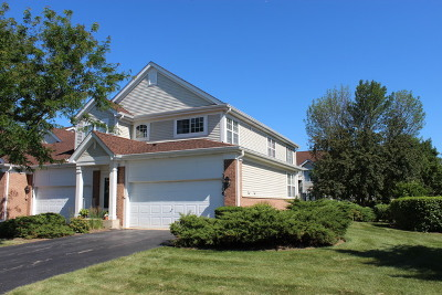 Warrenville Condo/Townhouse For Sale: 30706 McCormick Lane