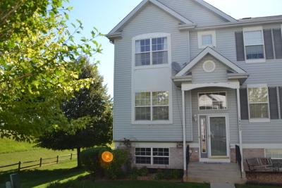 Lockport Condo/Townhouse For Sale: 16422 Teton Drive