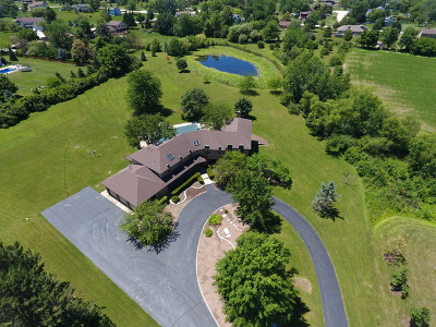 Mokena Single Family Home For Sale: 21632 Wolf Road