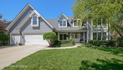 Naperville Single Family Home For Sale: 839 Lockwood Circle