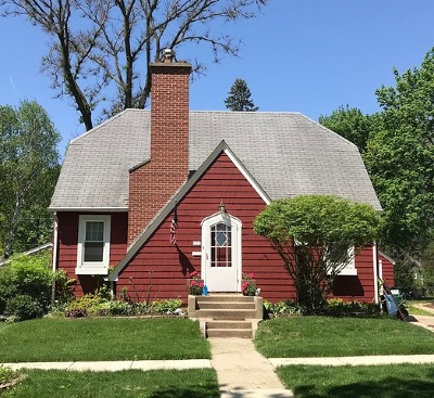 Geneva Single Family Home For Sale: 732 Illinois Street