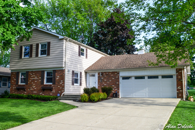 Buffalo Grove Single Family Home For Sale: 1107 Whitehall Drive