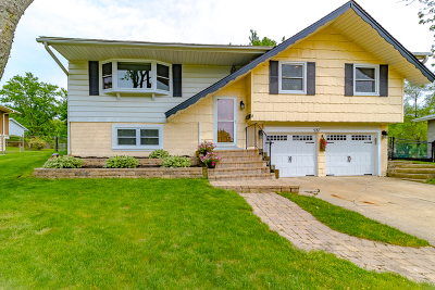 Schaumburg Single Family Home For Sale: 527 Cloud Court
