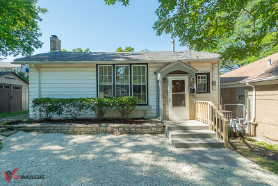 Lockport Single Family Home For Sale: 219 East 11th Street