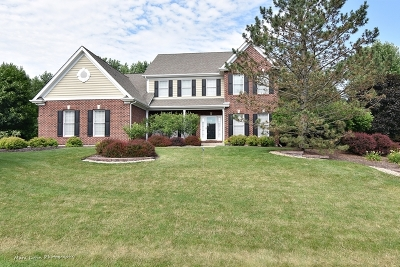 St. Charles Single Family Home For Sale: 7n511 Foxglove Court
