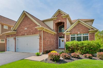 Glen Ellyn Single Family Home For Sale: 365 St Charles Road