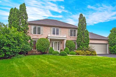 Naperville Single Family Home New: 1147 Cordula Circle