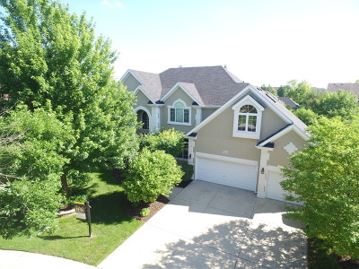 Naperville Single Family Home For Sale: 3304 Scottsdale Court