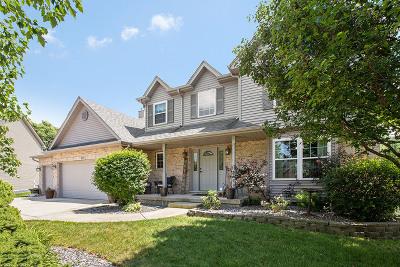 Minooka, Channahon Single Family Home For Sale: 810 Joanne Drive