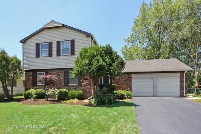 Buffalo Grove Single Family Home For Sale: 851 Silver Rock Lane