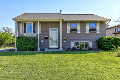 Woodridge Single Family Home Contingent: 7617 Larchwood Lane