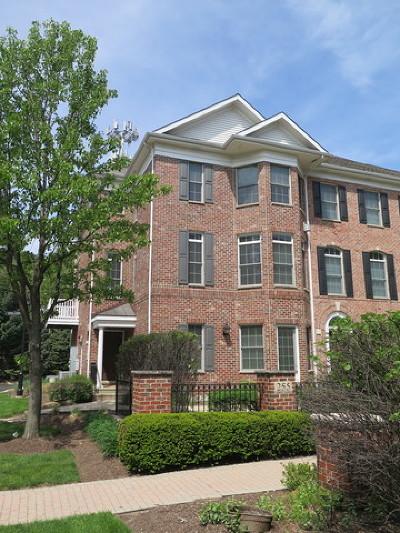 Naperville Condo/Townhouse For Sale: 255 Box Car Avenue