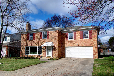 Mount Prospect Single Family Home For Sale: 412 South Na Wa Ta Avenue