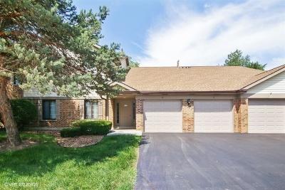 Arlington Heights Condo/Townhouse For Sale: 4214 North Mallard Drive #6