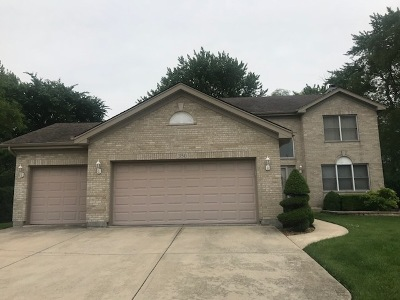 Wood Dale Single Family Home For Sale: 350 Forest Preserve Drive