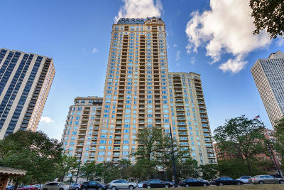 Chicago Condo/Townhouse For Sale: 2550 North Lakeview Avenue #S1504
