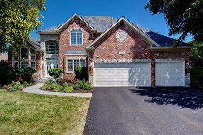 Naperville Single Family Home For Sale: 2208 Skylane Drive