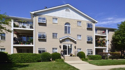 Naperville Condo/Townhouse For Sale: 457 Valley Drive #104