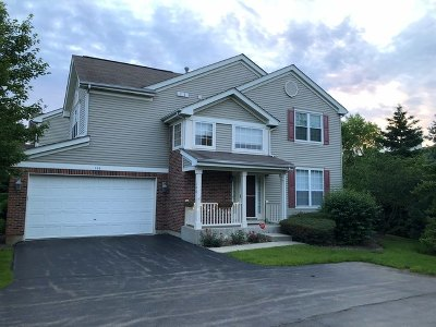Streamwood Condo/Townhouse For Sale: 106 Walden Court