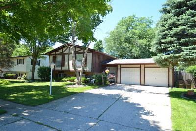 Crystal Lake Single Family Home For Sale: 906 Cambridge Lane