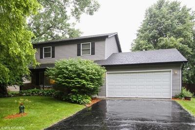 Crystal Lake Single Family Home For Sale: 9205 Arthur Street