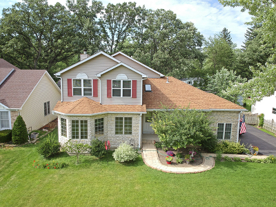 McHenry Single Family Home For Sale: 3022 Virginia Avenue