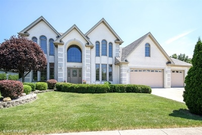 Tinley Park Single Family Home For Sale: 8919 Woodbine Court