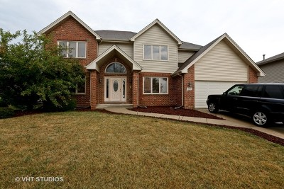 Richton Park Single Family Home For Sale: 4830 Bay View Drive