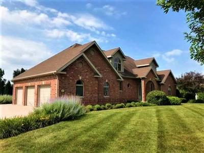 Bourbonnais Single Family Home For Sale: 3218 Woodhaven Drive