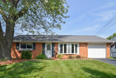 Streamwood Single Family Home For Sale: 402 Holly Drive