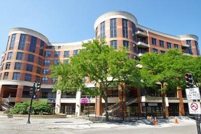 Condo/Townhouse New: 350 West Belden Avenue #318