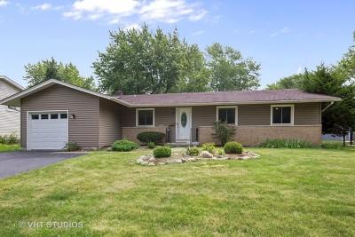 Woodridge Single Family Home For Sale: 7005 Roberts Drive
