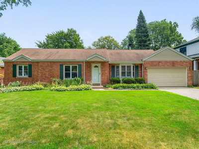Wheaton Single Family Home For Sale: 925 Lyford Lane
