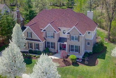 Lemont Single Family Home For Sale: 13518 Cambridge Drive