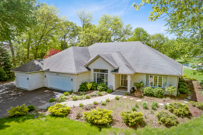Elgin Single Family Home For Sale: 10n836 Lakeside Court