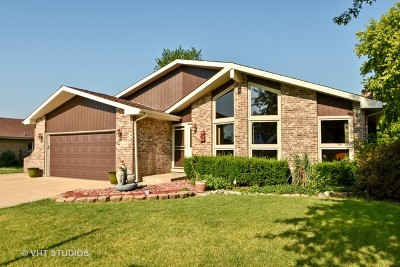 Frankfort Single Family Home New: 20400 South Grand Prairie Lane