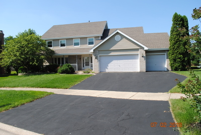 Naperville Single Family Home New: 1609 Valley Ridge Court