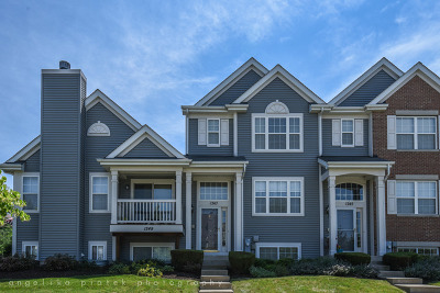 Pingree Grove Condo/Townhouse For Sale: 1247 Derry Lane