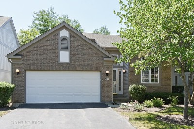 Buffalo Grove Single Family Home For Sale: 107 Manchester Drive