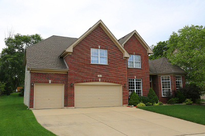 Streamwood Single Family Home For Sale: 1 Cranberry Court
