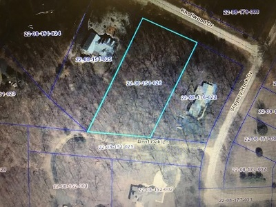 Ogle County Residential Lots & Land For Sale: 303 Knollwood Drive