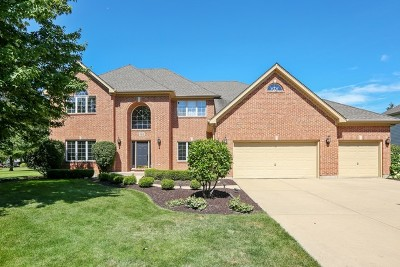 Naperville Single Family Home For Sale: 4316 Camelot Circle