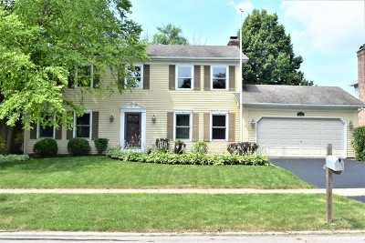 Naperville Single Family Home New: 1201 Langley Circle