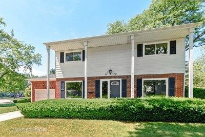 Mount Prospect Single Family Home Contingent: 110 South We Go Trail