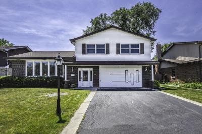 Mount Prospect Single Family Home For Sale: 2007 West Scott Terrace