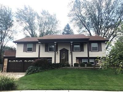 Buffalo Grove Single Family Home For Sale: 299 Belaire Drive