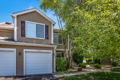 Schaumburg Condo/Townhouse For Sale: 1961 Windsong Drive #1961