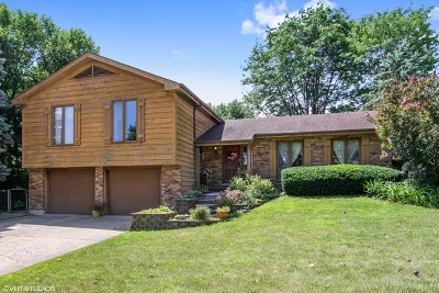 McHenry Single Family Home For Sale: 3505 West Shepherd Hill Lane