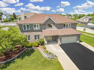 Plainfield Single Family Home For Sale: 22518 Bass Lake Road