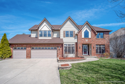 Naperville Single Family Home For Sale: 951 Leverenz Road